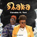 Canabia Shaka ft Teni artcover 1
